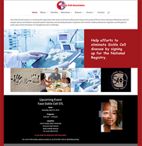 Portfolio Sickle Cell Association