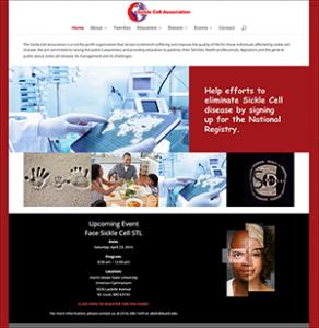 Portfolio Sickle Cell Association